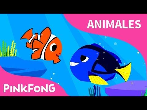 (14) Pez Payaso, Pez Cirujano Azul | Pez Tropical | Animales | PINKFONG Canciones Infantiles - YouTube
