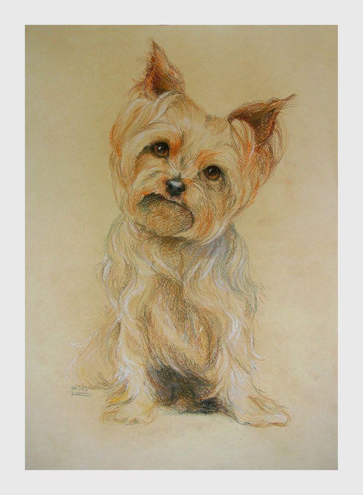 Друзья и подписчики! Я начала свою творческую карьеру художника с рисования портретов собачек. Мой магазин тогда назывался 'Портреты пушистых друзей' и мне приносило огромное удовольствие рисовать Ваших пушистых носиков, и делать подарки собачкам и их хозяевам. Я решила сделать небольшую распродажу своих самых любимых собачьих портретов и предлагаю Вам приобрести несколько моих картин с 50% скидкой. Акция продлится до 20 апреля.
