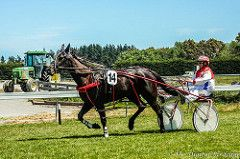 DSC02363.jpg (The Digital Birdcage) Tags: horse horseracing harnessracing motukarara bankspeninsulatrottingclub gerardoreilly jackalacksue