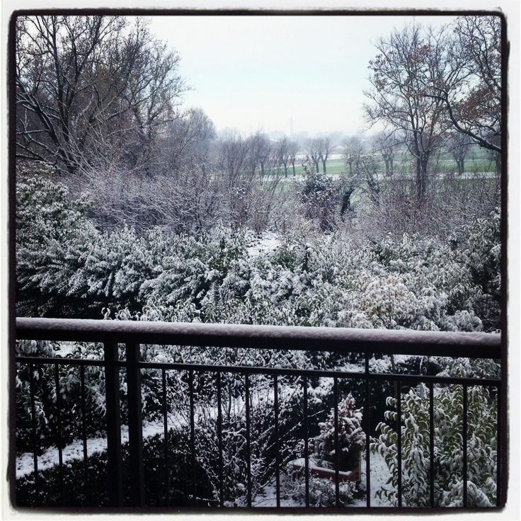 A #White #Saturday #Morning ... #Snow #Home #Modena