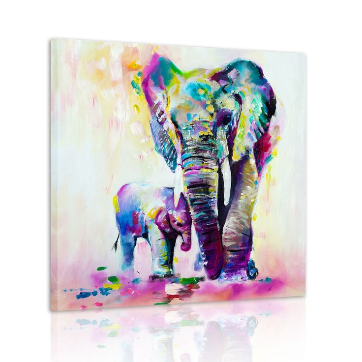 HD Canvas Print Home Decor Wall Art Painting Picture Color Elephant Unframed #5
