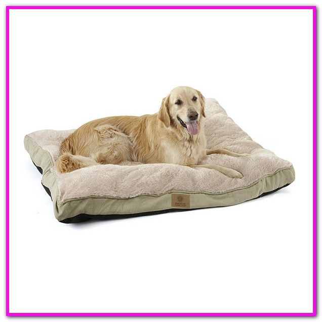 American Kennel Club Dog Beds 31 X 9 Dog Bed American Kennel