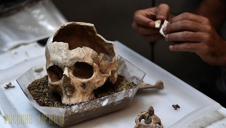 Место преступления – древние Афины http://feedproxy.google.com/~r/russianathens/~3/E-QDg5Mk2OI/22196-mesto-prestupleniya-afiny.html  На столах и стеллажах бесконечными рядами лежат проломленные черепа, скелеты с неестественно вывернутыми конечностями, останки лошадей - биоархеологиведут исследование древнего некрополя, ставшего одним из наиболее выдающихся археологических открытий 2016 года в Греции.