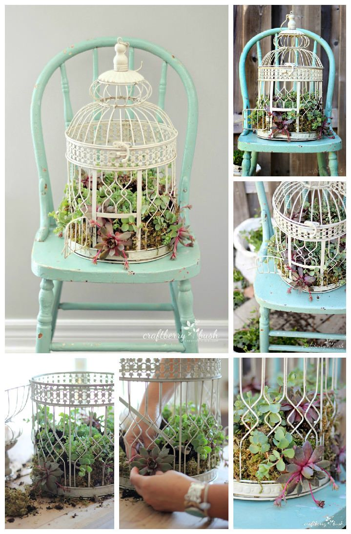We already showcased a pretty birdcage turned into a hanging garden. Here is a nice tutorial found at Craftberry Bush Blog that will show you how do it by