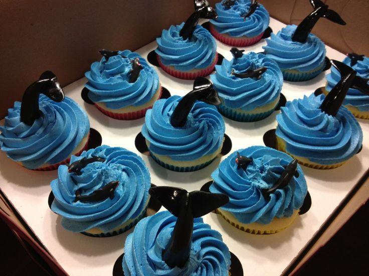 orca cake | whale-cupcakes | Debbies Cake Place
