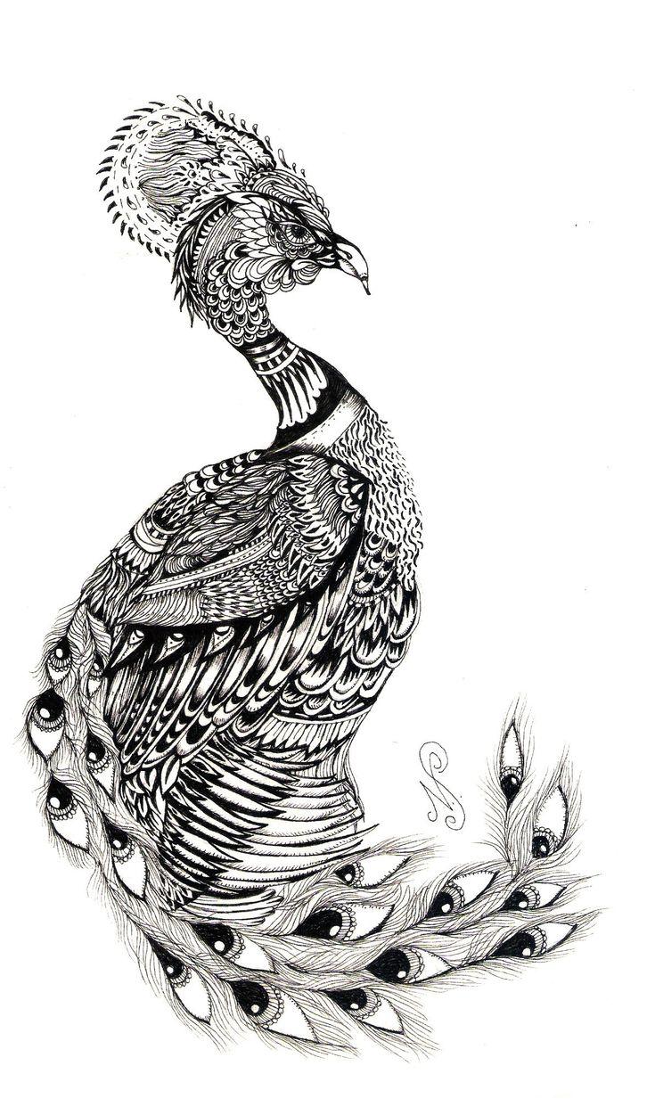 peacock1.jpg (Изображение JPEG, 1192 × 2013 пикселов ...