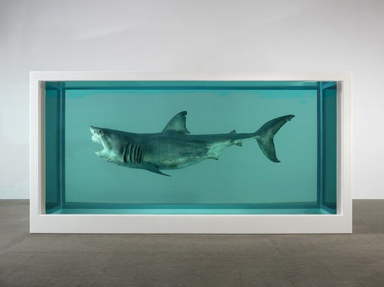 Damien Hirst's largest ever exhibition to go on display in Qatar - Damien Hirst