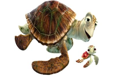 Crush and Squirt are Green Sea Turtle: Finding Nemo