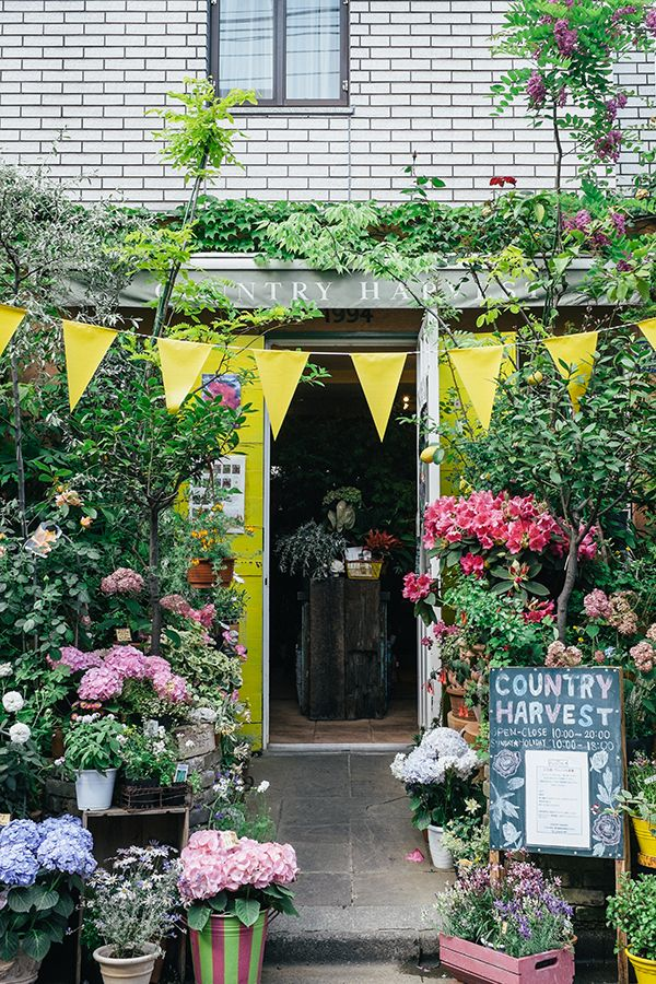3134 Best Images About Flower Shops On Pinterest