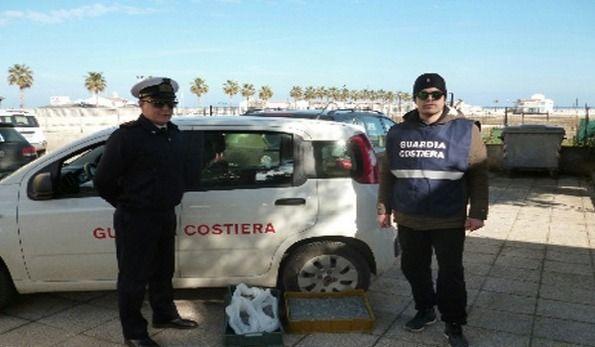 Guardia Costiera sequestra 10 kg di bianchetto - http://blog.rodigarganico.info/2015/cronaca/guardia-costiera-sequestra-10-kg-di-bianchetto/