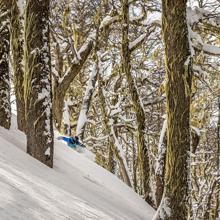 Does it get any better?Joaquín Venain dreamland  #levelgloves #skigloves #wintergloves