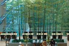 Tokyo Fine Dining | Mandarin Oriental Hotel, Tokyo