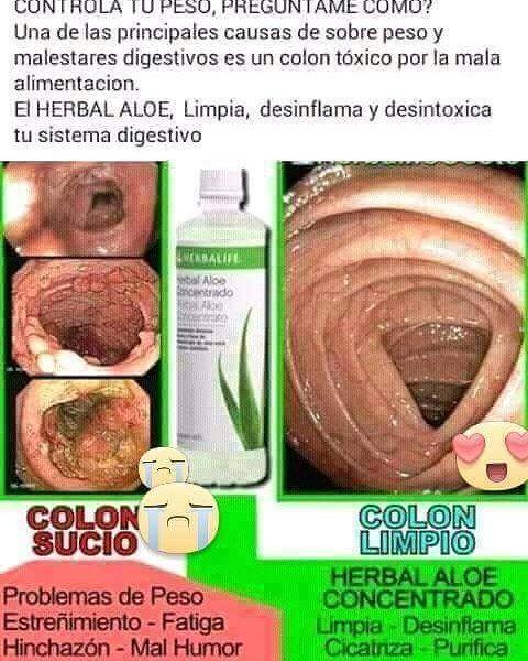 PREGUBTAME POR LIMPIEZA DIGESTIVA #limpiezadigestiva #colon #nutricionherbalife #salud #aloe by yansiherbalife