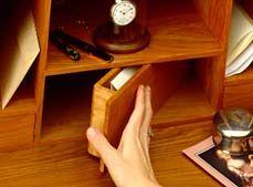 Hidden compartment in bookshelf.