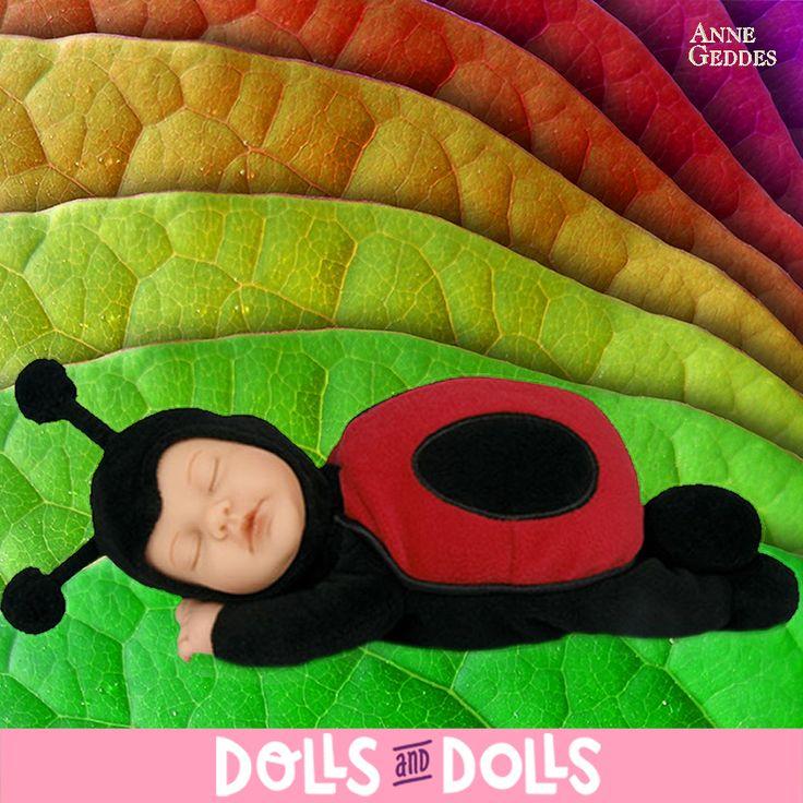 Esta mariquita es una bonita y dulce #muñeca de la marca #AnneGeddes. Mide 23 centímetros y tiene su cara y sus manos de vinilo y su cuerpecito de relleno. Dulzura, paz e inocencia junto con su carácter realista y tierno es lo que nos muestran cada uno de los #muñecos que forman esta colección y que están inspirados a partir de fotos de bebés reales que realiza la misma Anne Geddes. ¡Son ideales para regalar y coleccionar! #Dolls #MuñecasAnneGeddes #Bonecas #Poupées #Bambole