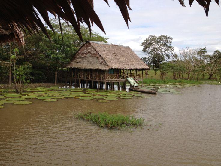 Amazonas Colombia Leticia, Amazonas
