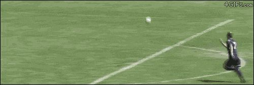 13 Funny Gifs from Crazy to Hilarious