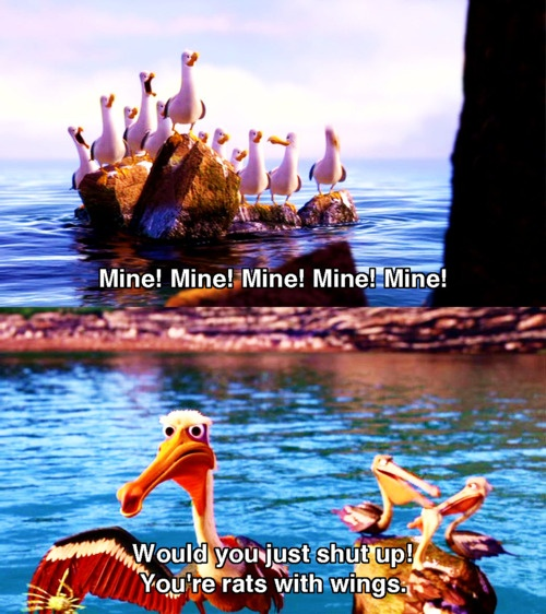 """Finding Nemo, """"rats with wings is what my mom calls seagulls"""""""