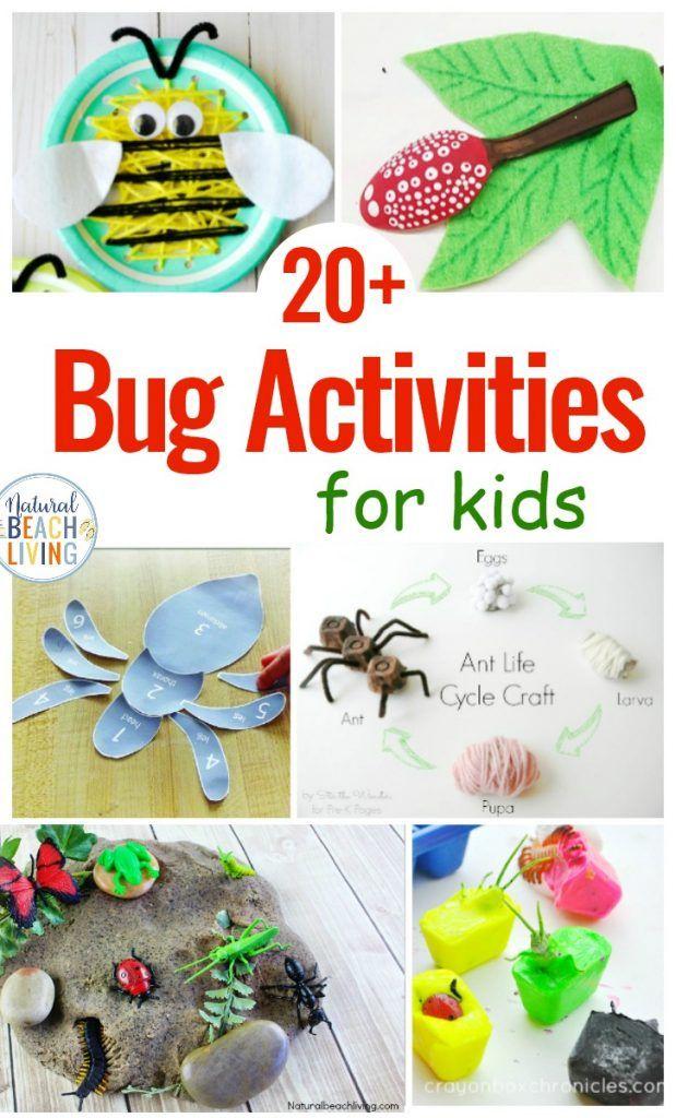 25 Bug Activities For Preschool Bug Activities Insect Crafts