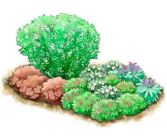 dry shade garden plan - Shaded Flower Garden Ideas