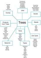 Figure 1. Planning web of the Tree Project created by the teachers.