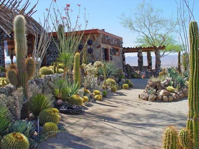 Mojave Rock Ranch Lush Landscape At High Desert Retreat