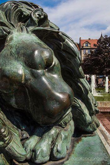 Górny Śląsk: Bytom - Śpiący lew │sleeping lion │photo Natalia Bojanowicz