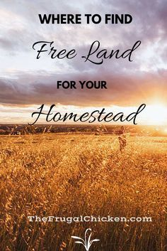 If you want to start a homestead, here's a start! A list of towns where you can get the land for free!