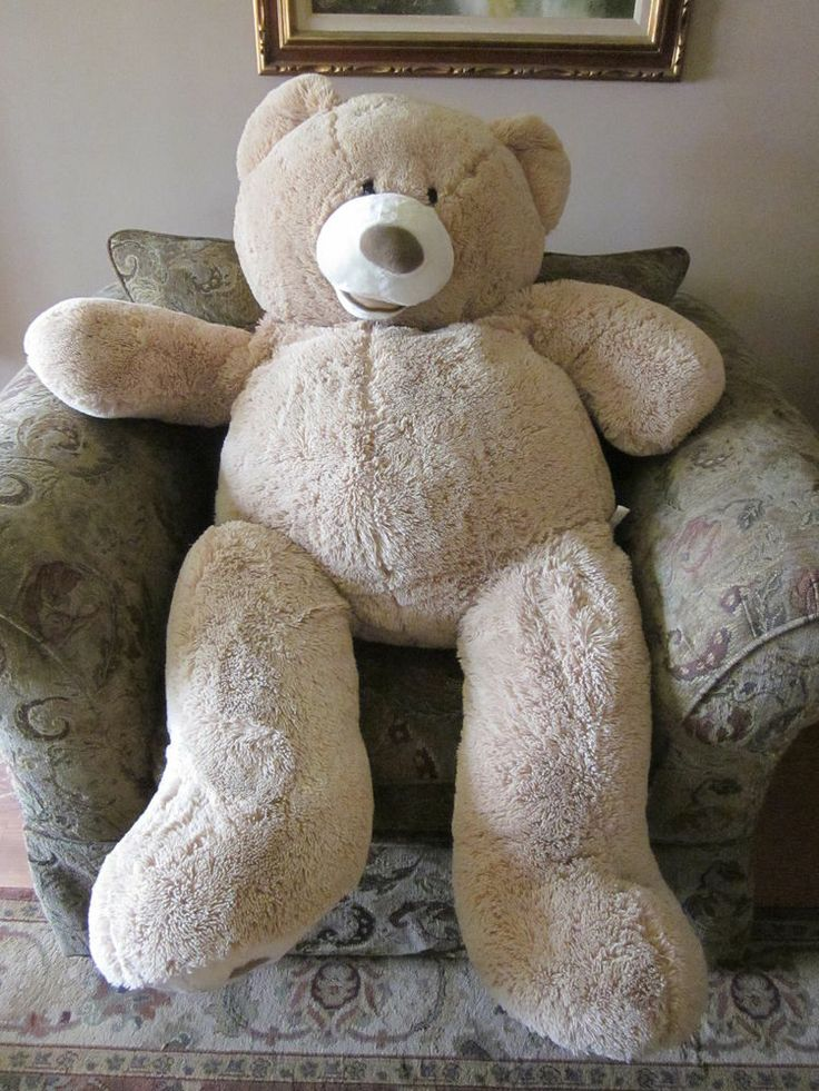 1000 Ideas About Giant Stuffed Animals On Pinterest Ty