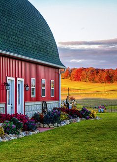 Flower Bed By Barn! BEAUTIFUL