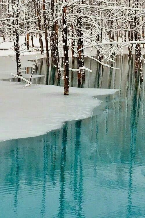 Hokkido Japan Blue Pond and Spring Snow by Kent Shiariashi