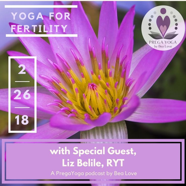 Hello Mamas,  Are you trying to boost fertility naturally or perhaps know someone who is?  Join us on Feb. 26, 1:30pm (CST) for a LIVE video chat.  In this episode, we will discuss yoga for fertility, benefits, and more...  To find out, I'll be talking with Liz Belile, RYT, and Fertility Doula.  Please share this event with your momma community <3  ox
