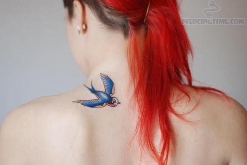 29 best images about bluebirds on pinterest cage tattoos i like birds and bird tattoos. Black Bedroom Furniture Sets. Home Design Ideas