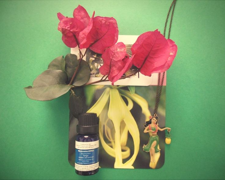 On balmy summer nights, when relaxing at home or enjoying the company of friends, add some Tango essential oil blend to your diffuser/oil burner to create your own tropical paradise with the redolent aroma of ylang ylang.