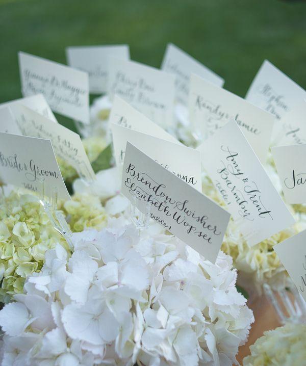 Lake Wedding Ideas: Lake Tahoe Weddings, Wedding