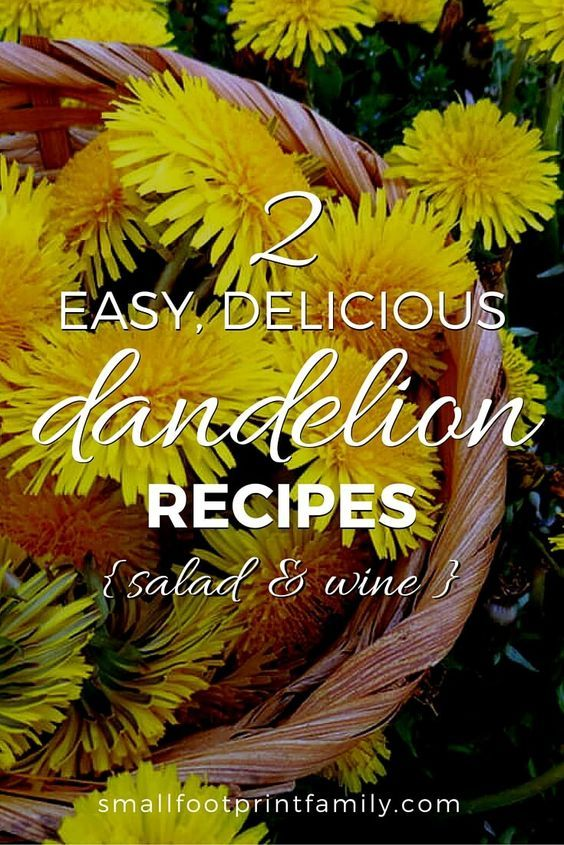 Here are two great ways to enjoy the humble but nutritious and delicious dandelion; one recipe for the leaves, and one for the flowers.