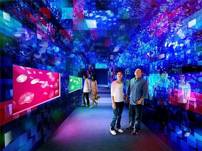 東京・すみだ水族館の煌めくクラゲ万華鏡トンネルが常設に - 大水槽のプロジェクションマッピングも延長 | ニュース - ファッションプレス