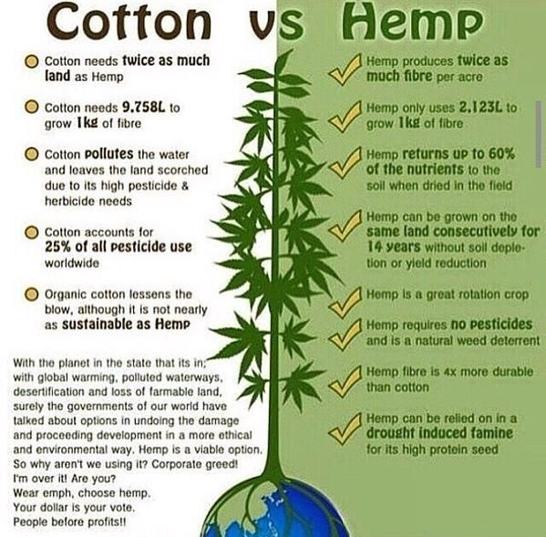In a Battle Between Hemp vs #Cotton, Hemp Always Wins   http://www.davidwolfe.com/hemp-vs-cotton/ via @DavidWolfe #Hemp #MME