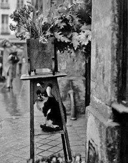 DOISNEAU - Le chat de la fleuriste, PARIS - 1953