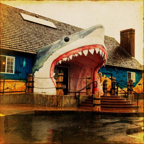 Sharky's - Ocean Shores, Washington