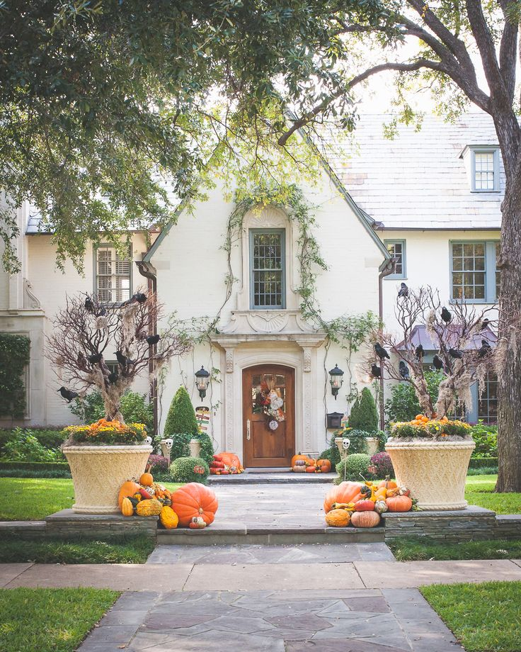 Halloween Display by Melissa Gerstle Design Photography by Tara Cosgrove