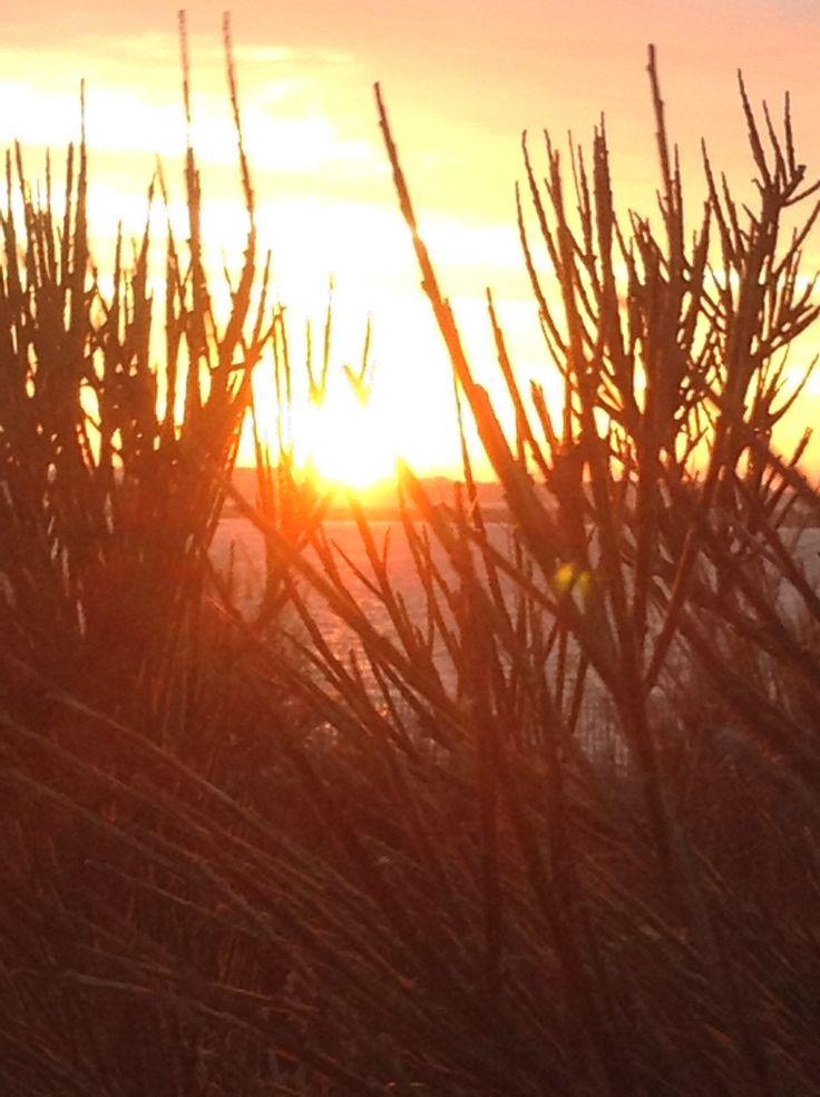 Beautiful sunset x
