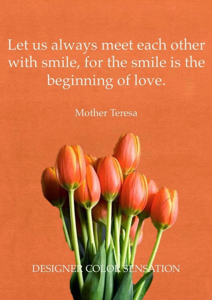 Quote of the Day!  Mother Teressa