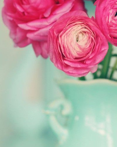 pink against mint...love this color combo