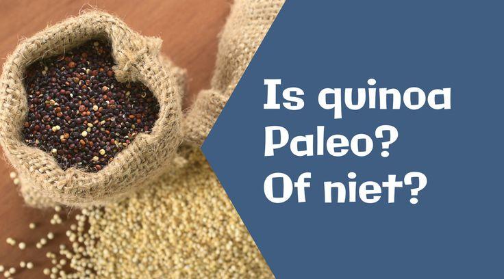 Quinoa lijkt wel het zoveelste superfood dat de supermarkten langzaam maar zeker verovert. Het is van nature uit glutenvrij, bevat alle essentiële aminozuren en is rijk aan B-vitaminen. Daarom ook dat veel vegetariërs en veganisten zweren bij quinoa als een excellente vleesvervanger. Ook in de glutenvrije community is het erg populair en wordt het gebruikt [...]