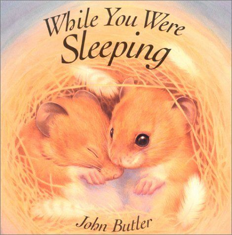 While You Were Sleeping by John Butler, http://www.amazon.com/dp/1561452548/ref=cm_sw_r_pi_dp_Rorusb1J26BJ6