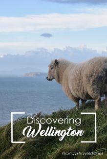 Discovering Wellington