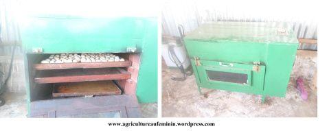 L'avènement de l'incubateur artificiel  d'œuf de type traditionnel « made in Bénin » a contribué à l'augmentation des effectifs de l'aviculture familiale ou traditionnelle au Bénin.