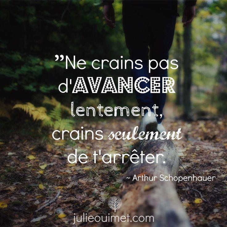 Citations et pensées positives | Créer ma vie, Julie Ouimet | ''Ne crains pas d'avancer lentement, crains seulement de t'arrêter.'' Arthur Schopenhauer
