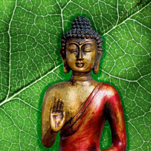 Pin On Buddha Image